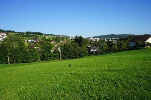 Wunderschöner Baugrund mit angrenzendem Grünland