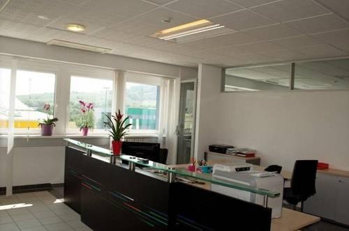 Bürofläche mit sehr guter Aufteilung und 10 zentral begehbaren Zimmern im IZ-NÖ Süd