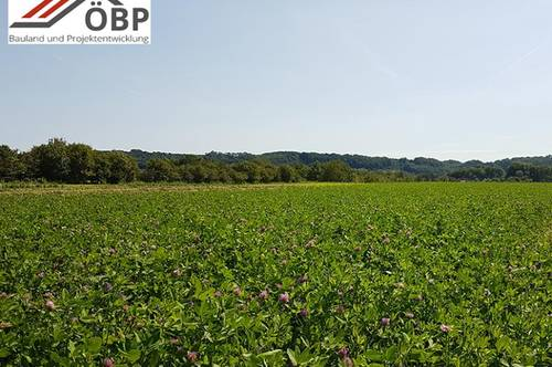 Desselbrunn: Ackerfläche zum Tausch einer Baulandfläche