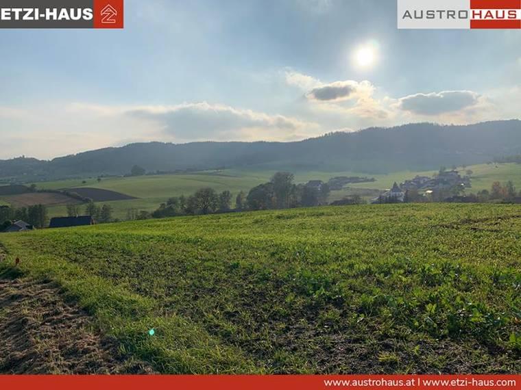 2021_01_web_Ottnang_Grundstückfoto_Realmanager_3.png