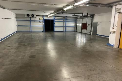 Traiskirchen - TOP Betriebsobjekt ca. 4.600 m² (Hallen, Büro, Freiflächen)