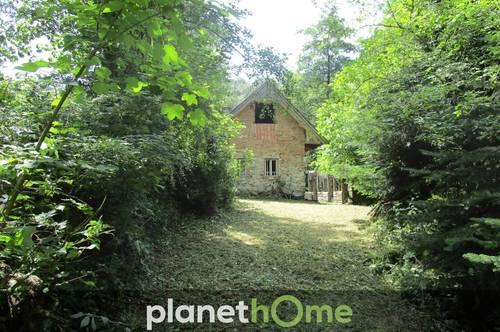 Absolute Rarität – Alleinlage: Steinhaus mitten in der Natur in einer Waldlichtung