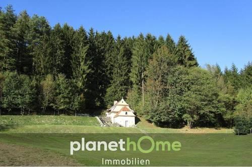 Absolute Rarität - Schlössl im Grünland mit Betriebsbaugrund