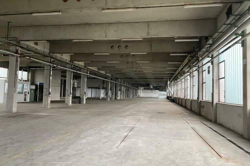 Lagerhalle von 3.500m² bis ca. 11.500m² mit 5x Laderampen kurzfristige Anmietung wäre auch möglich.