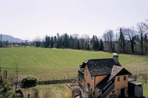 Historisches Gebäudeensemble im Grünland in Aigen