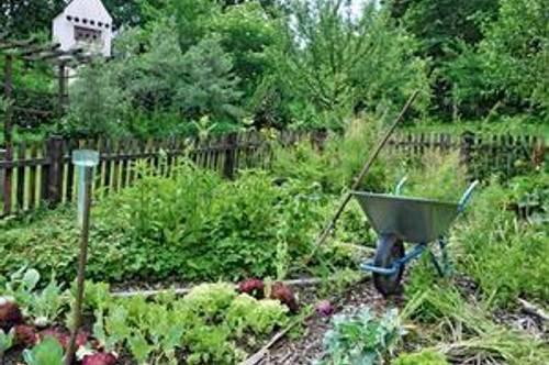 Reichenau: Neue barrierefreie Wohnung mit Gardening-Möglichkeit