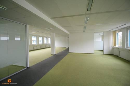Salzburg Nord - Modern: Büro, Ausstellung oder Showroom mieten