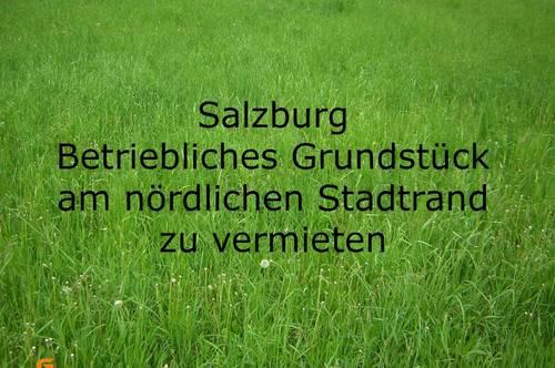 Nördlicher Stadtrand - Betriebliches Grundstück 5.000 m² ev. teilbar zu vermieten