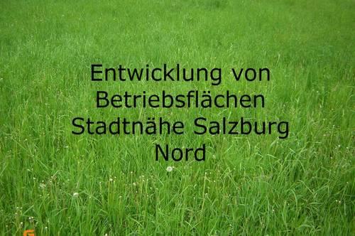 Gewerbepark Salzburg Nord - Entwicklung von Betriebsflächen nach Wunschplanung