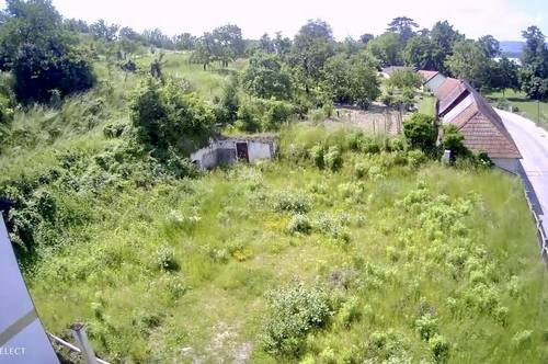 Grundstück mit Donaublick