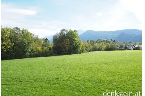 Rarität! großzügige Dachterrassenwohnung am Grünland in Anif Salzburg