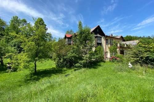 3.500 m² am Waldesrand mit Jahrhundertwendevilla