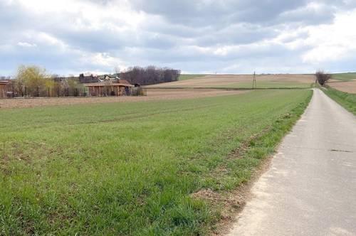 Attraktives Grundstück in Grünruhelage