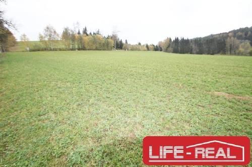 sonniges Gewerbegrundstück mit Widmung Mischbaugebiet im Mühlviertel
