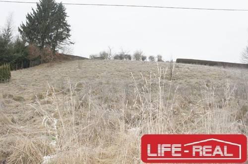 sonniges Grundstück in einer ruhigen Lage in der Gemeinde Haslach an der Mühl, Teilung möglich