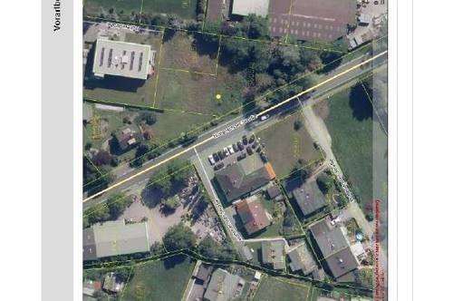Baureifes Grundstück an der Ortseinfahrt von Lustenau zu verkaufen!