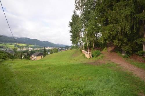 8650 Kindberg: großzügige Landwirtschaftliche Fläche!