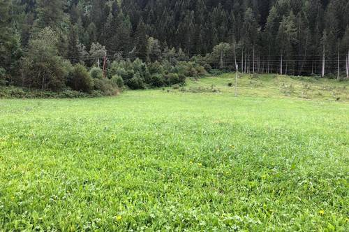 Landwirtschaftliches Grundstück im Oberlungau
