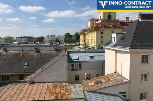 Gemütliche Dachgeschosswohnung in unmittelbarer Schlossnähe!