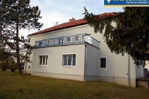 große Wohnung mit sonniger Terrasse