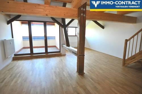 Schöne, geräumige Wohnung mit Schloss Atmosphäre und Loggia - Erstbezug