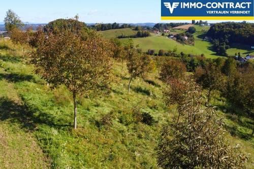 Traumlage mit Aussicht im sonnigen Südburgenland - Bauland mit Nussbaumplantage