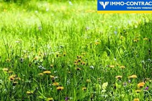 Landwirtschaftliche Fläche im Kurort  - Keine Bebauung oder Umwidmung möglich!