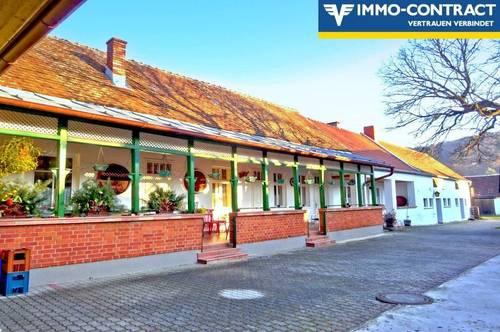 Leben und genießen, wohnen und arbeiten - traditionelles naturnahes Leben in der südburgenländischen Weinidylle am Fuße des Hannersberges