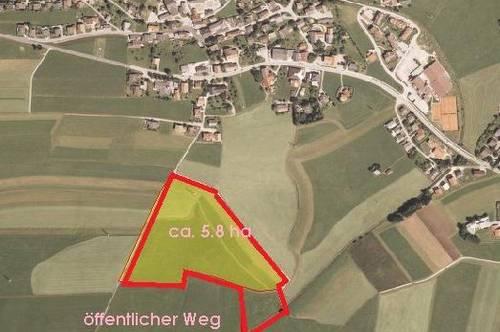 bei Salzburg: 5,8 ha ebener Wiesen- bzw. Acker-Grund - 1855