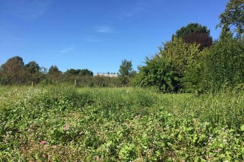 sonniges Grundstück in Bestlage in Mellach