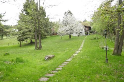 Eichgraben – 2 Baugrundstücke nebeneinander in wildromantischer Natur! (Gesamt ca. 3.123m²)