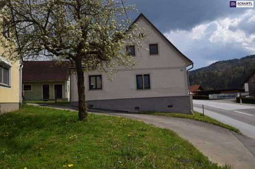 ITH KLEINLANDWIRTSCHAFT mit KERNSANIERTEN WOHNHAUS 5 Nebengebäuden ca. 1 ha Wiese - ideal für PFERDEHALTUNG in ARNFELS/LEIBNITZ.