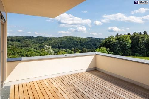 TOP: Terrassenhaus mit unwiderstehlichen Panoramablick provisionsfrei zu verkaufen! + VIDEO