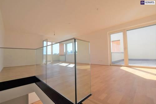 Eine wunderschöne Doppelhaushälfte mit perfekter Raumplanung wartet auf Sie! Provisionsfrei! Videorundgang!