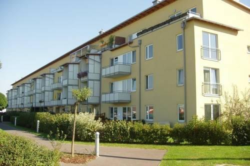 Bezaubernde 3-Raum Wohnung mit Loggia in zentrumsnaher Ruhelage! Ideal auch für Familien! Sehr gutes Preis-Leistungs-Verhältnis! Provisionsfrei!
