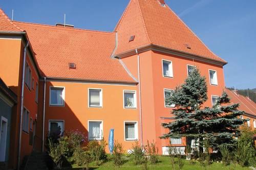 Singles aufgepasst! Ansprechende und leistbare Wohnung in hervorragender Lage! Ruhig, grün und dennoch nah am Zentrum! Provisionsfrei!