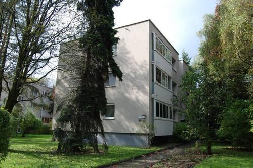 Schnell sein! - Sehr schöne 3-Raumraum-Wohnung mit  Loggia!  Zentrumsnähe mit perfekter Verkehrsanbindung! Provisionsfrei!