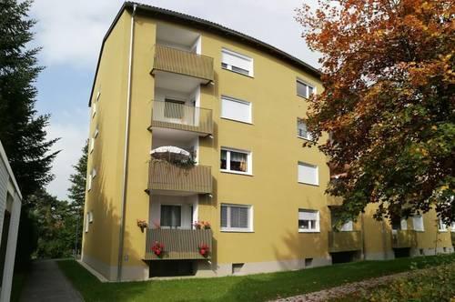 Sonnenanbeter und Ruhesuchende aufgepasst! Ansprechende 3-Zimmer-Wohnung in grüner, zentrumsnaher Toplage mit Loggia! Provisionsfrei!