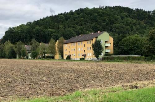 Ihr Wohn(t)raum am Waldrand, 3 Zimmer Familienwohnung mit großem Balkon, provisionsfrei, die Siedlung wird gerade saniert!