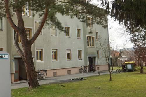 PROVISIONSFREI - Wagna - ÖWG Wohnbau - geförderte Miete - 3 Zimmer