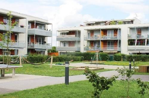PROVISIONSFREI - Kalsdorf bei Graz - ÖWG Wohnbau - geförderte Miete mit Kaufoption - 3 Zimmer