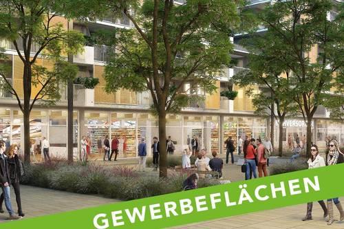PROVISIONSFREI - Graz, Reininghaus - ÖWG Wohnbau - Miete -