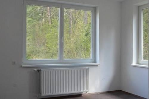 Mietwohnung mit 29,41 m² in Ofenbach bei Kirchberg am Wechsel.