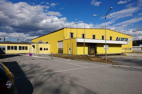 Großes Betriebsobjekt m. diversen Hallen in Spillern! Widmung Bauland Industrie