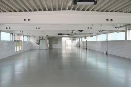 Industrieliegenschaft - Büro - Lager - Produktion