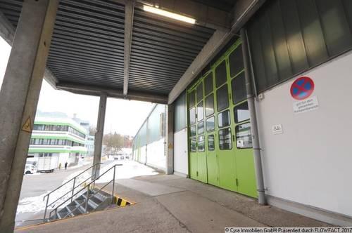 Hallenflächen in Linzer Zentrum zu vermieten