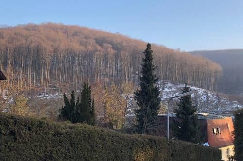 Südseitiges Grundstück mit unverbaubarem Wienerwaldblick nahe Sophienalpe zum Kauf , 1140 Wien