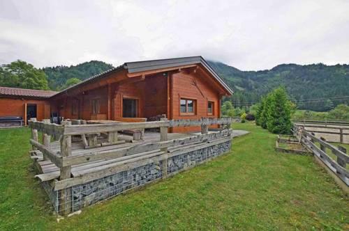 Gemütliches Blockhaus in sonniger Waldrandlage
