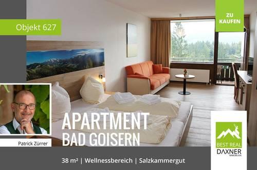 Gepflegtes Ferienapartment in Bad Goisern