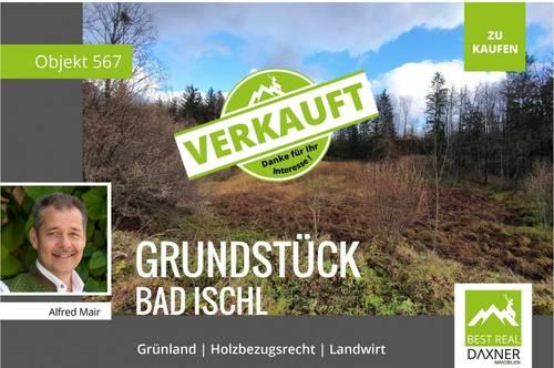 Verkauft! Grünland Grundstück in Bad Ischl mit Holzbezugsrecht